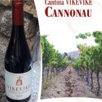 VikeVike Cannonau