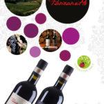 Panzanello – Panzano in Chianti