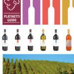 Platinetti Azienda Agricola – Ghemme