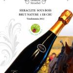 Champagne Timothée Stroebel