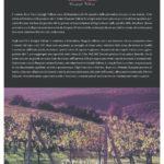 Terre Nere – Brunello di Montalcino