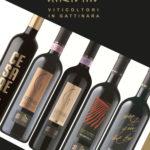 Anzivino viticoltori in Gattinara